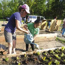Refugees excited about growing own produce in SHIM garden in Whitehall