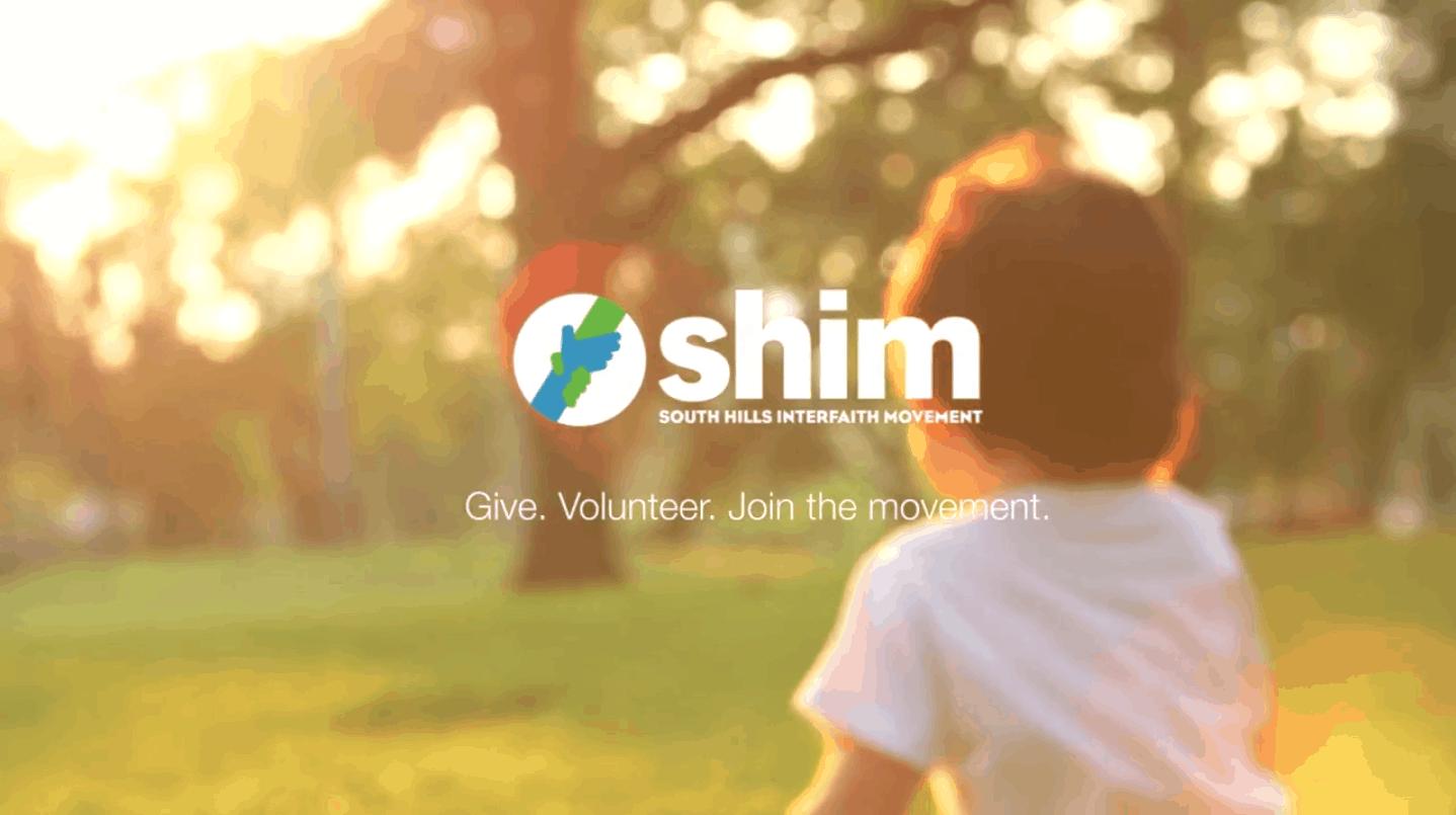 SHIM video